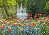 Ross Fountain In Butchart Gardens