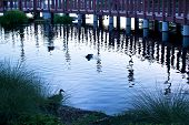 stock photo of wane  - Ducks take a late swim beside a footbridge in a park pond as the waning sun ushers in twilight - JPG