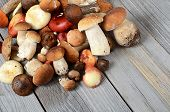 image of boletus edulis  - The raw boletus edulis as a background - JPG