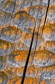 foto of woodcarving  - background or texture woodcarving detail wood orange color - JPG