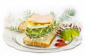 stock photo of spank  - is a cactus sandwich cheese and jam - JPG