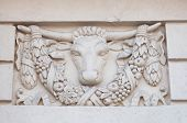 Basrelief On The Facade Of A Historic Building With Bull Head