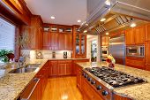 Постер, плакат: Luxury Kitchen Room