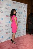 LOS ANGELES - OCT 13:  Camila Banus arrives at the Susan G. Komen 'Designs for the Cure' Gala at Mil