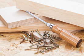 image of joinery  - Close up view of a Phillips head screwdriver and threaded metal wood screws with one screw inserted into a plank of wood in a carpentry joinery and construction concept