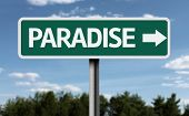 Paradise creative sign