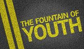 The Fountain Of Youth written on the road