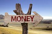 Money wooden sign isolated on desert background