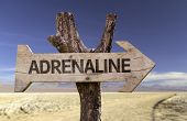 Adrenaline wooden sign with a desert background