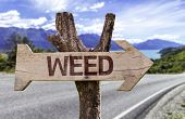 Weed wooden sign with a street background
