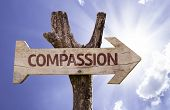 Compassion sign with a beautiful day on background