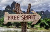 Free Spirit wooden sign with a forest background