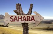 Sahara wooden sign with a desert background