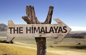 The Himalayas wooden sign with a desert background