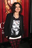 LOS ANGELES - NOV 5:  Sara Gilbert at the