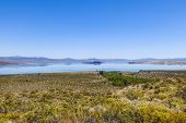 Beautiful Mono Lake In California Near Lee Vining