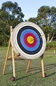 Archery Shooting Target