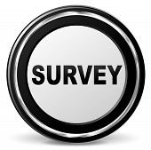 Survey Chrome Icon