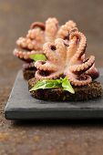 appetizer small marinated octopus (squid) with basil and olive oil