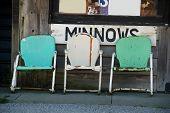 Minnows for Sale