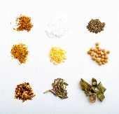 foto of pepper  - mix of nine spices on white background mustard cayenne pepper curry sweet pepper chive garlic thyme salt and pepper - JPG