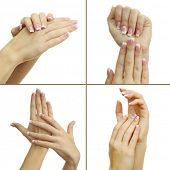 foto of french manicure  - Hands with french manicure isolated on white in collage - JPG