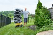 foto of beside  - Homeowner Man Standing beside a Garden Wagon with a Pile of Bagged Mulch at the Backyard While Looking at the Camera - JPG
