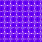 foto of cosmos flowers  - violet cosmos seamless pattern background - JPG