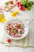 foto of radish  - Radish Spring salad with herbs fresh and delicious dressing from olive oil pepper salt and lemon juice and zest - JPG