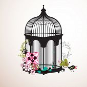 garden bird cage