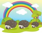 illustration of hedgehog on rainbow background