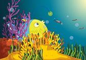 A big angler fish waits as fish approach