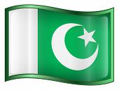 Pakistan Flag Icon. ( With Clipping Path )