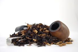 foto of tobaco leaf  - Tobaco tobaco cancer tobacco health nicotine smoking butt unhealthy habit smoker shadows light - JPG