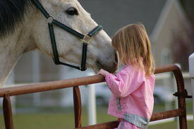 picture of horse girl  - photo of a little girl and a horse - JPG