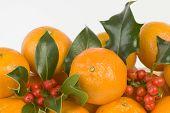 Clementinen und Holly