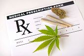 Cannabis background with leaf, pre rolls and cannabis nug over medical prescription sheet isolated o poster