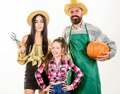 Family Farmers Gardeners Pumpkin Harvest Isolated White Background. Family Rustic Style Farmers Prou poster