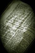 Bíblia série Timothy2 sépia