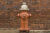 Fire Hydrant Wall Close