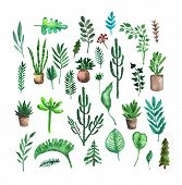 Hand Painted Watercolor Graphic Design Element. Set Of Botany Motifs. Trees, Leaves And Plants. Succ poster