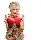 Постер, плакат: Портрет злой старший женщина боксер изолированные на белом фоне