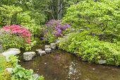 Stepping Stones To Cross A Garden Stream