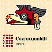 Aztec calendar symbols - Cozcacuauhtli or vulture (16)