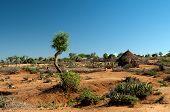 Afrikanische Stammes-Hütte
