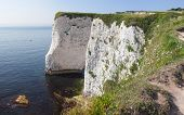 Cliffs Near Old Harry