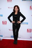 LOS ANGELES - JUN 2:  Marilu Henner arrives at the WGA's 101 Best Written Series Announcement at the