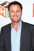 LOS ANGELES - JUN 8:  Chris Harrison at the 2nd Annual T.H.E EVENT at the Calabasas Tennis and Swim