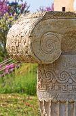 Archaeological Park. Metaponto. Basilicata. Italy.