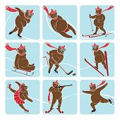 Set Of Brown Bear Plays Winter Sport. Humorous Illustration.